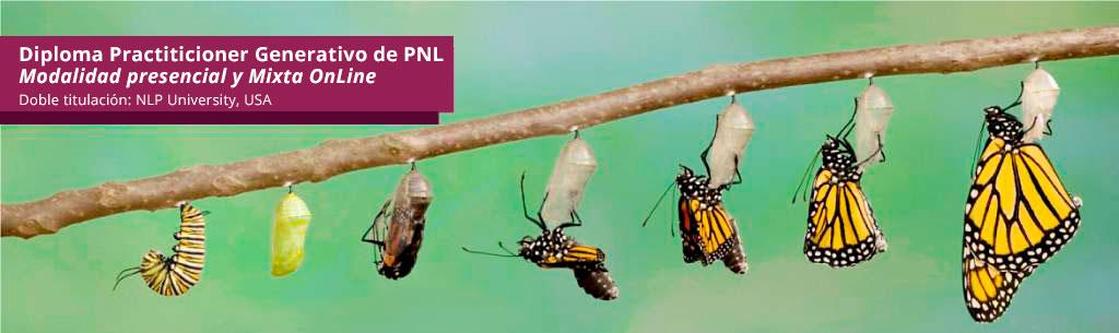 Diploma Practitioner Generativo de PNL